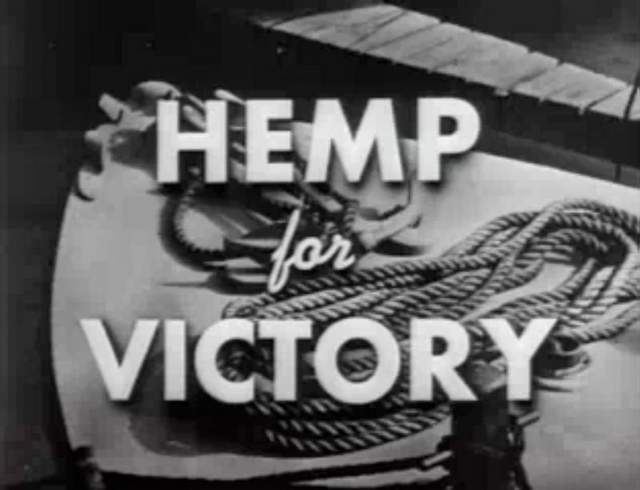 A Brief History of Hemp in Colonial America, Source: http://imaroachkilla.com/wp-content/uploads/2014/04/hemp4v.jpeg