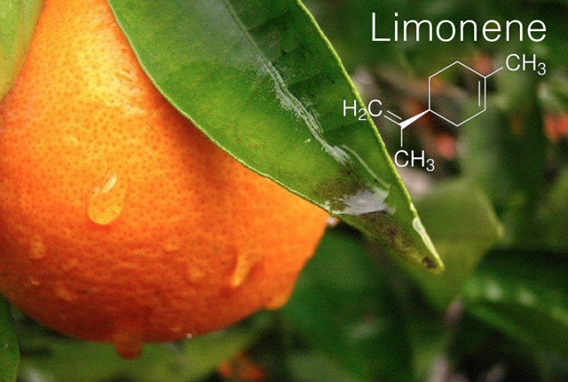 Image result for limonene terpene