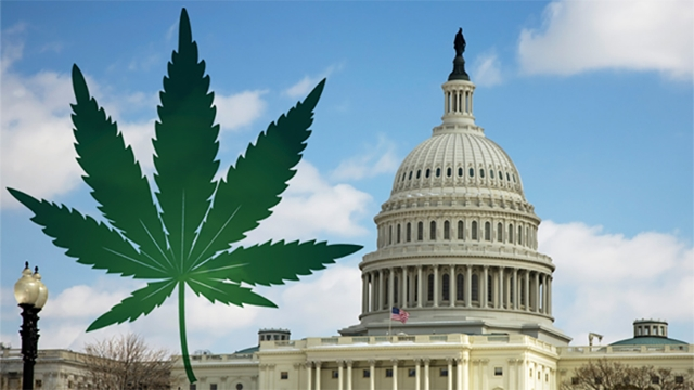 GOP Reps Vow to Block DC Legalization, Source: http://www.notiminuto.com/site/assets/files/27502/notiminutowashingtonmarihuana.jpg