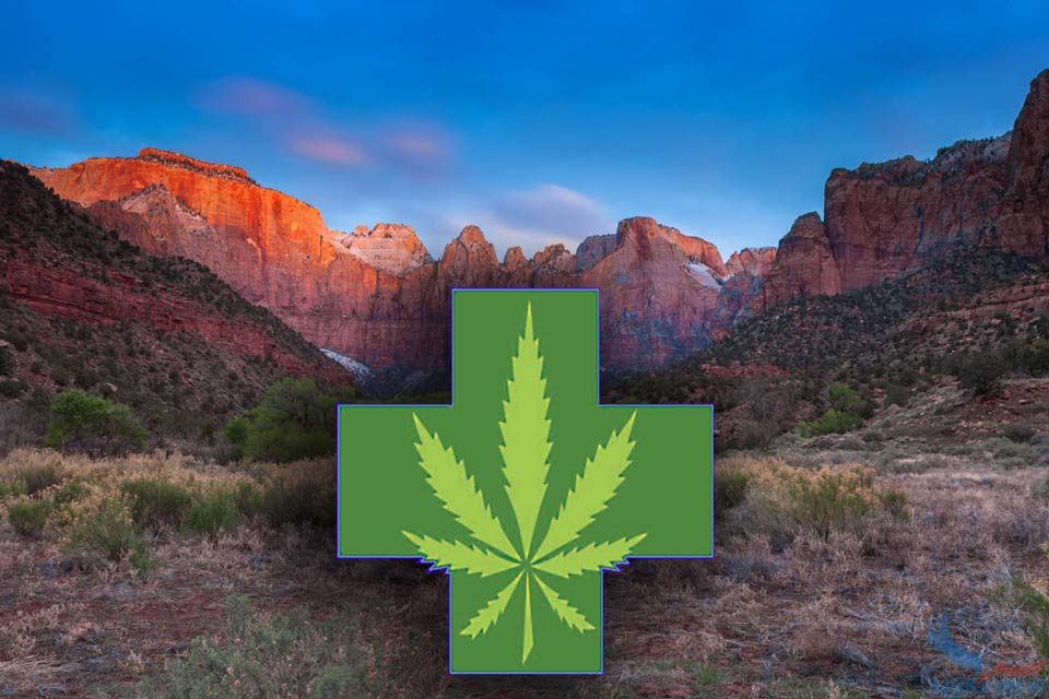 UNM cannabis study finds 'significant' pain relief