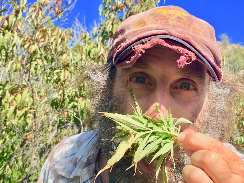 Hemp farmer shares his adventures, misadventures